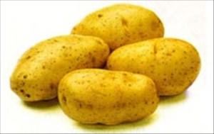Patates püresini hazırlarken